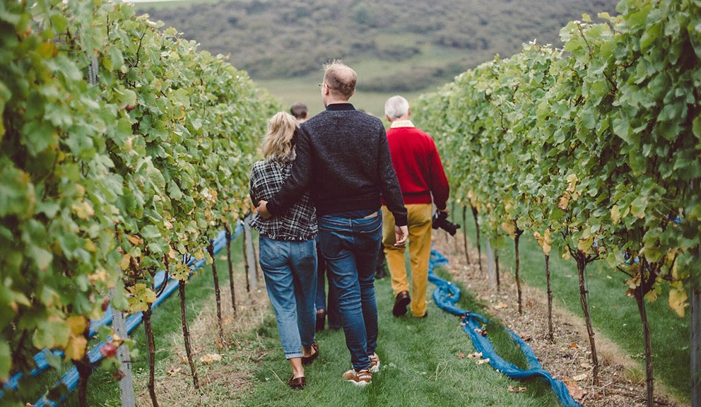 sussex vineyards tour