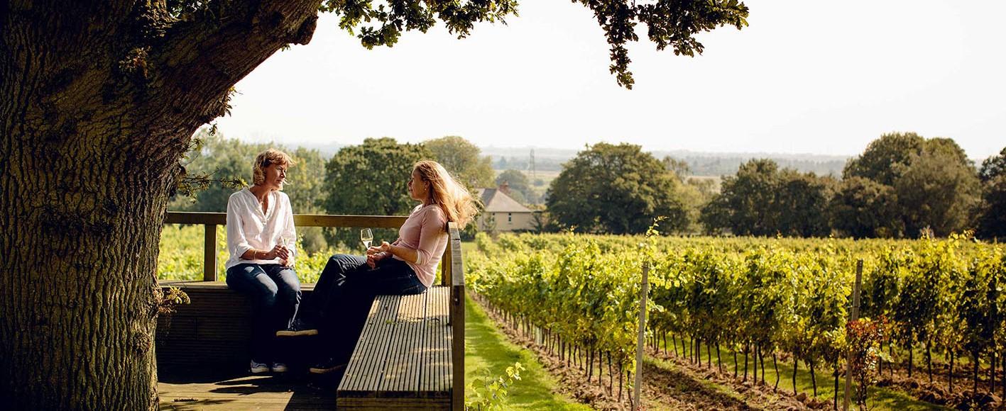 UK vineyard map